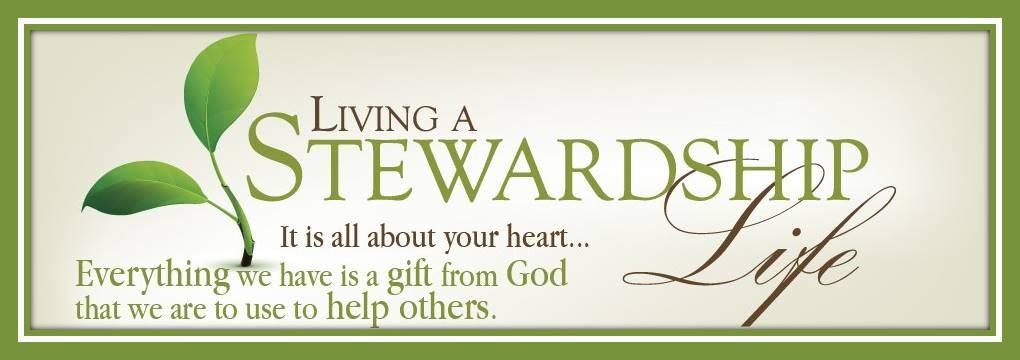 StewardshipLife